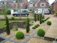 Topiary Box balls GAP Photos Specialising in horticultural