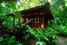 Playa Nicuesa Rainforest Lodge is a moderate eco lodge located in the private, remote rainforest on the South Pacific Coast of Costa Rica.