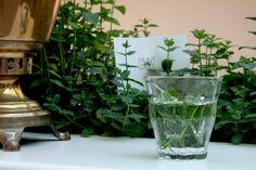 Vegetable   WaterWick