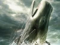 CAPODOGLIO, o il naufragio della baleniera Essex - Biografie, diari, memorie - Writer's Dream - Community