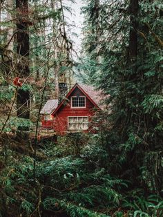 Bauen Blockhaus im Wald Asphalt versus Concrete Driveways – Which is Best Article Body: Asphalt and Into The Woods, Cabin In The Woods, Cottage In The Woods, Bohemian House, Red Cottage, Cozy Cottage, Rustic Cottage, Cabin Homes, Log Homes
