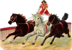 Oblaten Glanzbild scrap die  cut chromo Zirkus  16cm Pferde Artist circus Manege
