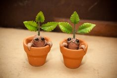 CUTE Miniature Mini Mandragora Mandrake door netherworldoddities