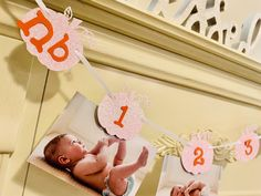 Excited to share this item from my #etsy shop: Pumpkin Photo Banner, 12 Month Photo Banner, Milestone Monthly Birthday Banner, Gold Pumpkin Banner, Gold Pumpkin Pink And Gold Birthday Party, Gold First Birthday, 1st Birthday Banners, 1st Birthday Girls, First Birthday Parties, Pumpkin 1st Birthdays, Pumpkin Birthday Parties, Happy 1st Birthdays, Pumpkin Patch Birthday