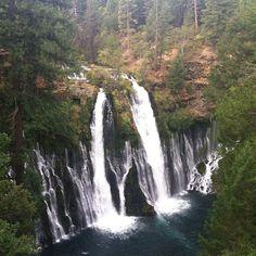 Burney Falls, CA. www.visitcaliforn...