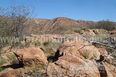 Track Cam: Typical rock track conditions and scenery along Section 2, Larapinta Trail. © Explorers Australia Pty Ltd 2013