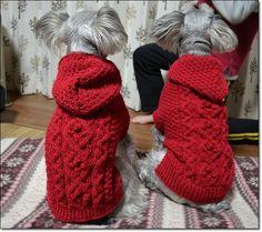 赤いセーター完成~♪ - 雨上がりの虹