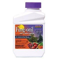 Amazon.com : Bonide 880 Fungonil Fungicide, 16-Ounce : Fung Onil : Patio, Lawn & Garden
