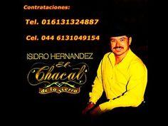 """El Corrido del Burro -  Isidro Hernandez """"El Chacal de La Sierra"""""""