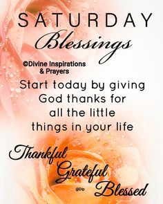 Saturday Greetings, Happy Saturday, Sunday, Weekend Quotes, Good Morning Quotes, Good Morning Beautiful Flowers, Bible Verses For Women, Morning Messages, Daily Quotes
