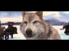 Twilight Saga - Story of the wolf Jacob Black (part 3) - YouTube