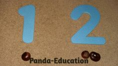 An amazing amount of ideas for conkers - look on http://www.panda-education.co.uk/2.html
