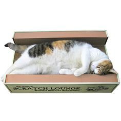 Scratch Lounge now featured on Fab.  Our cats LOVE these - better than any cat scratcher we've ever gotten them!