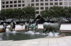 Mustangs at Las Colinas is a bronze sculpture by Robert Glen, that decorates Williams Square in Las Colinas in Irving, Texas