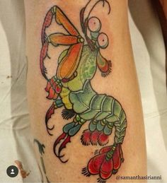 Rainbow mantis shrimp tattoo by @samanthasirianni