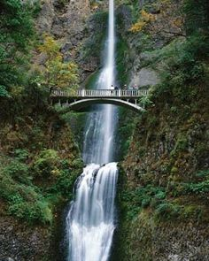 So this is a gorgeous place I want to visit... Multnomah Falls in Oregon.