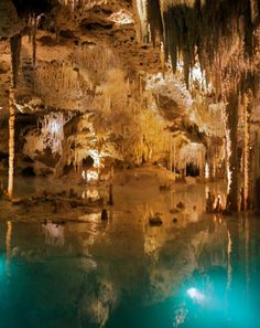 Admire the most beautifull thing you can ever see while you travel to the Riviera Maya or Cancun, you must swim through this amazing caverns.
