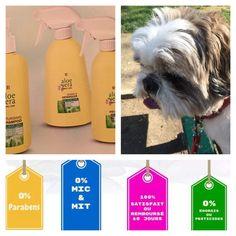 Vous aimez votre petit chien ? Donnez lui le meilleur ! Pour sa toilette,utilisez les produits LR Health and Beauty pour animaux, totalement naturels ! Pour tous renseignements : 06 15 88 83 26