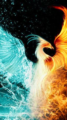 Phoenix Images iPhone Wallpaper with image resolution 1080x1920 pixel. You can make this wallpaper for your iPhone 5, 6, 7, 8, X backgrounds, Mobile Screensaver, or iPad Lock Screen