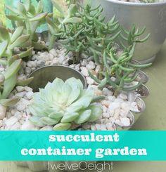 DIY Succulent Garden- #succulent #container #garden #diy https://twitter.com/twelveOeightDIY