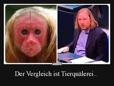 Der Vergleich ist Tierquälerei.. | Lustige Bilder, Sprüche, Witze, echt lustig