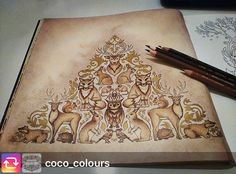 Fantastic from @coco_colours. Old wood From #enchantedforestcoloringbook by #johannabasford #bosqueencantado  Write #arte_e_colorir to appear in our Group ➡️ @desenhos_ofart @arte_e_colorir