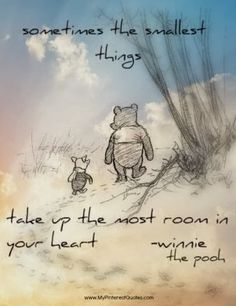"""Sometimes the smallest things take up the most room in your heart"" <3 Winnie the Pooh."