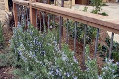This photo shows how rebar can be used to give an ordinary handrail a cutting-edge industrial vibe. This type of installation would be at home in a rustic garden as well as in a contemporary one.