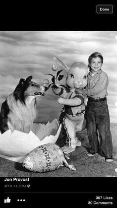 Easter promo photo of Lassie & Timmy-Jon Provost