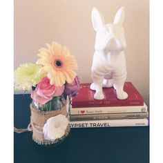 Frenchie fans like @arianalauren are in love with our French Bulldog Coin Bank.