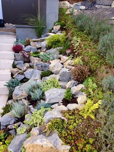 Rockery garden garden rock fronthousegardenideasretainingwalls front house garden ideas retaining walls 47 amazing japanese rock garden ideas for beautiful home yard Landscaping Retaining Walls, Succulent Landscaping, Landscaping With Rocks, Front Yard Landscaping, Landscaping Ideas, Succulent Rock Garden, Rock Retaining Wall, Front Walkway, Rockery Garden