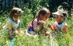 Meet at the Shawnee Branch before heading to the woods next door where we will play and explore. Bring your preschooler, rain or shine. Be prepared to get dirty and to have some fun! This program happens on Wednesday, September 7, 2016 from 10:00 – 11:00am. For more information, contact Pamela at 260-421-1355.