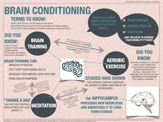 Facts-about-the-brain-meditation-infographic