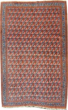 sehr feiner Doroksch  244 x 166 cm