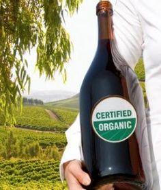 La magia del vino organico