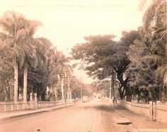 Undated early photograph of Nuuanu Avenue, Honolulu, by James J. Williams, Hawaiian Historical Society Historical Photograph Collection