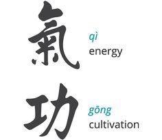 Qigong - Qi is our life force or internal energy and Gong is the exercise or the work we do to cultivate our life force.