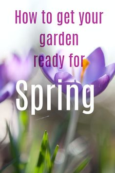 How to get your garden ready for Spring with this simple list of jobs that will make all the difference. Is your garden ready for the new season? Gardening tips and gardening hacks to help you make the very best of what you have #garden #gardening #gardeningtips #gardeninghacks Beautiful Space, Beautiful Gardens, Beautiful Homes, Summer Flowering Bulbs, Garden Animals, List Of Jobs, She Sheds, Amazing Transformations, Gardening Hacks