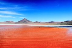 The red lagoon in Bolivia - landscape South America Continent, South America Animals, Columbia South America, South America Travel, Bolivia, Gaia, Road Trip, South America Destinations, Paisajes