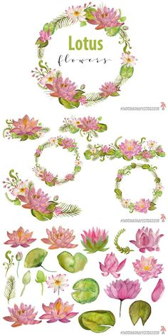 Lotus flowers clip art, hand painted watercolor floral clip art, digital flowers, flower bouquets, flower frames With the flowers in this set you can create Flower Watercolor Tattoo, Watercolor Lotus, Lotus Painting, Watercolor Flowers, Lotus Flower Art, Lotus Art, Flower Logo, Wreath Drawing, Lotus Design