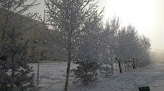 Kongre Cad. Ardahan Turkey