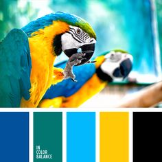 These shades of blue and turquoise go well with bright yellow. This palette can be used safely for decoration of a flat or a bathroom..