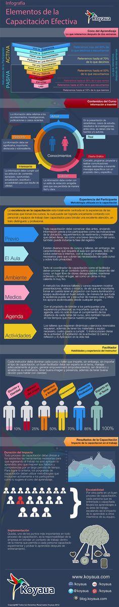 Elementos de un Programa de Capacitación Efectiva | #Infografía #Educación