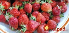 Why You Should Never Throw Away the Tops of Your Strawberries Summer Drink Recipes, Summer Drinks, Strawberry Topping, Health And Beauty Tips, Raised Garden Beds, Fruit, Healthy, Strawberries, Food