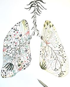 """""""A complicated pair 
