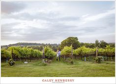 Engagement Photos at Arrington Vineyards