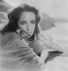 Love how Elizabeth looks in The Sandpiper. Just love it! Dame Elizabeth Taylor : Photo