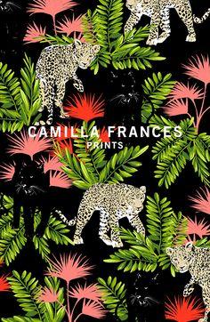 About Camilla | Camilla Frances Prints