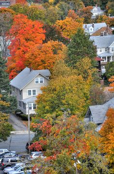 Missing New England fall