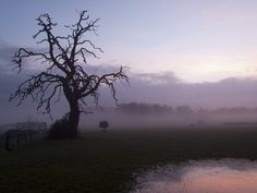 Misty Morning Colours by Paul Chapman on 500px